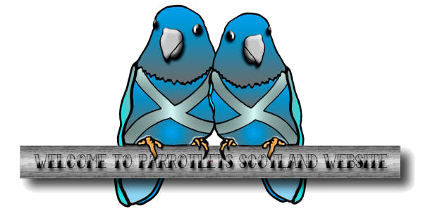 Welcome to Parrotlets Scotland.